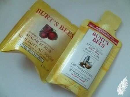 Sizing Up Samples From Burt's Bees