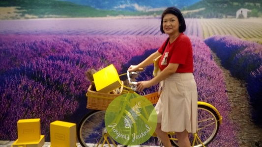 Taking my yellow bicycle through the lavender fields