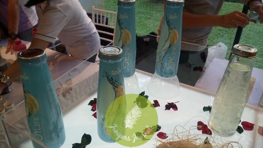 Ecolite Collagen Bird's Nest Drink