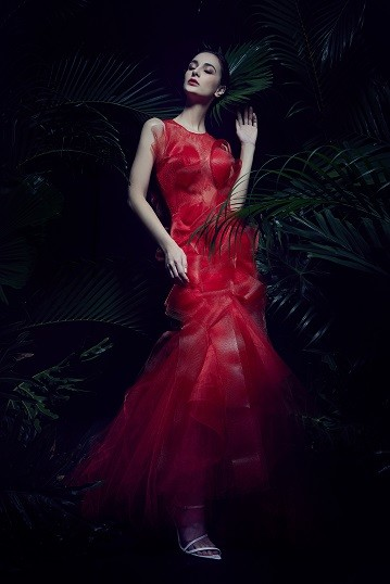 Red Lace Horsehair Mermaid Cut Gown