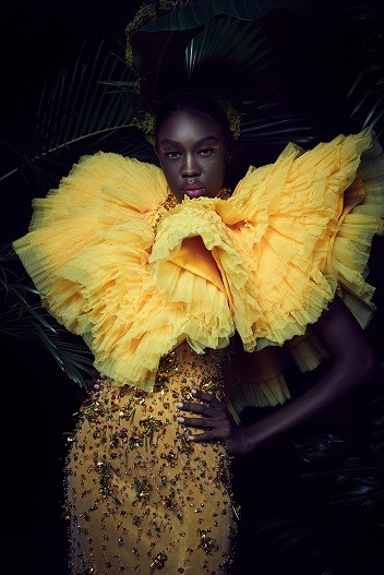 Yellow Cape Net with Beaded Mermaid Cut Gown