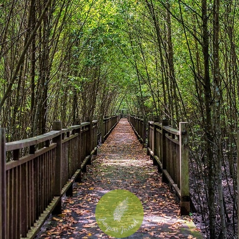 Taman Alam Kuala Selangor